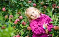 Little girl in the apple garden Stock Photography