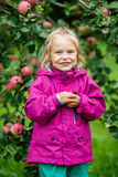 Little girl in the apple garden Stock Photos