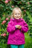 Little girl in the apple garden Stock Photos