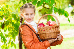 Little girl with apples in  park Royalty Free Stock Images