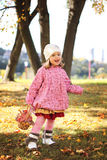 Little girl in autmn park Royalty Free Stock Photo