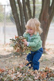 Little Girl in Autumn Royalty Free Stock Photography