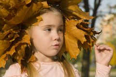 Little girl in autumn 2. Portrait of little girl in the late of autumn 2 Stock Image