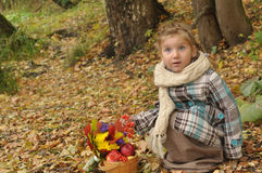 A little girl with an autumn bouquet and a basket of ripe apples hunkered down in a forest meadow Stock Photography