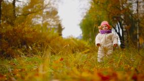 Little girl in autumn clothing in warm hat and scarf standing in the Park watching the yellow leaves falling off the. Trees. Lifts and separates the leaves from stock video footage