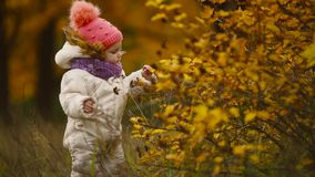Little girl in autumn clothing in warm hat and scarf standing in the Park watching the yellow leaves falling off the. Trees. Lifts and separates the leaves from stock footage