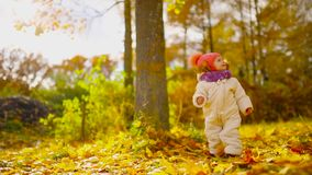 Little girl in autumn clothing in warm hat and scarf standing in the Park watching the yellow leaves falling off the. Trees. Lifts and separates the leaves from stock video
