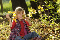 Little girl in the autumn forest Stock Images