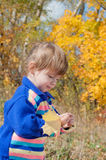 Little girl in the autumn forest Royalty Free Stock Images