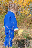 Little girl in the autumn forest Royalty Free Stock Photos