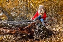 Little girl in the autumn forest Royalty Free Stock Photo