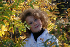 Little girl with autumn leaves Stock Photos