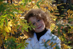 Little girl with autumn leaves. In hands Royalty Free Stock Photos