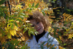 Little girl with autumn leaves Royalty Free Stock Photo