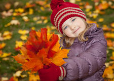 Little girl with autumn leaves Royalty Free Stock Photography