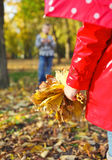 Little girl with autumn leaves in the beauty park Royalty Free Stock Photo