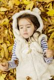 Little girl at the autumn leaves Stock Images