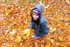 Little girl in autumn orange leaves at park royalty free stock photography