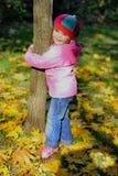 The little girl in autumn park Stock Photos