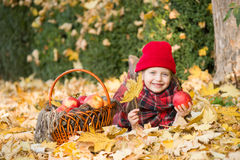 Little girl in autumn park with apple basket Stock Image