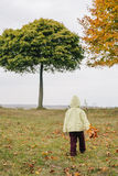 Little girl in the autumn park.with a bouquet of leaves. Stock Image