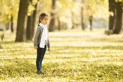 Little girl in the autumn park. Cute little girl in the park at autumn stock photo