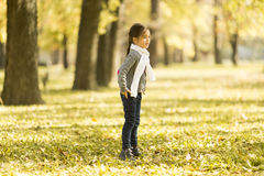 Little girl in the autumn park. Cute little girl in the park at autumn royalty free stock photos