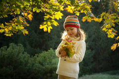 Little girl in an autumn park Royalty Free Stock Photo