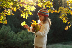 Little girl in an autumn park Stock Photography