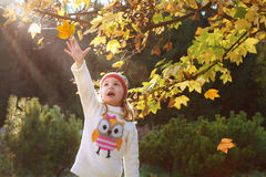 Little girl in an autumn park stock photography