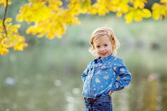 Little girl in the autumn park. Happy little girl in the autumn park royalty free stock image
