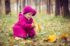 Little girl in autumn park Royalty Free Stock Images