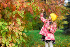 Little girl in autumn park outdoors Stock Image