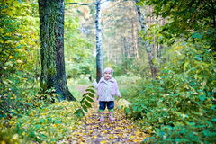 Little girl in autumn park Stock Image