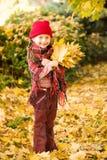 Little girl in autumn park Royalty Free Stock Photo