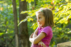 Little girl autumn portrait Royalty Free Stock Photo