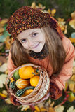 Little girl with autumn pumpkins in a basket Royalty Free Stock Images