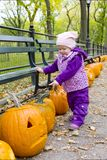 Little girl in autumnal Central Park Royalty Free Stock Photos