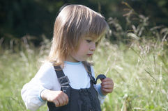The little girl on a background of  meadow Royalty Free Stock Photos