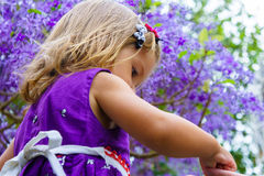 Little girl on the background of purple wood Stock Photography