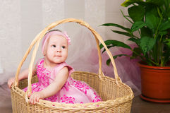 The little girl in a basket Royalty Free Stock Image