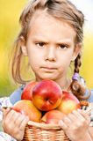 Little girl with basket of apples Stock Image