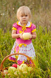 Little girl with basket of fresh apples Stock Image