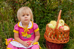 Little girl with basket of fresh apples Stock Photos