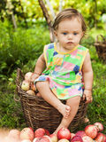 Little girl with a basket of red apples Stock Photos