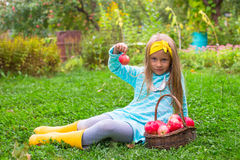 Little girl with basket of red apples in sunny Stock Photo