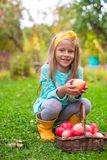 Little girl with basket of red apples in sunny Royalty Free Stock Photos