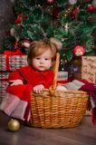 A little girl in a basket under a Christmas tree Royalty Free Stock Images