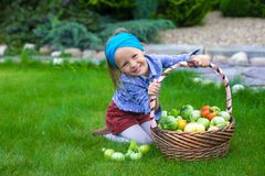 Little girl with baskets full of tomatoes Stock Photography