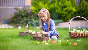 Little girl with baskets full of tomatoes Royalty Free Stock Photo